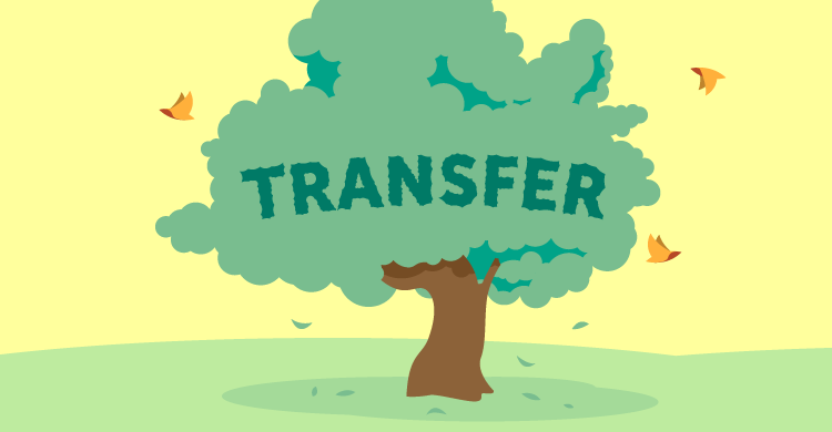 Birds and Transfer