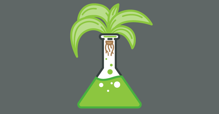 Growth in science