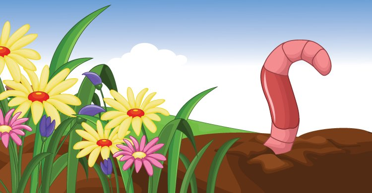 Worm sense and flower power